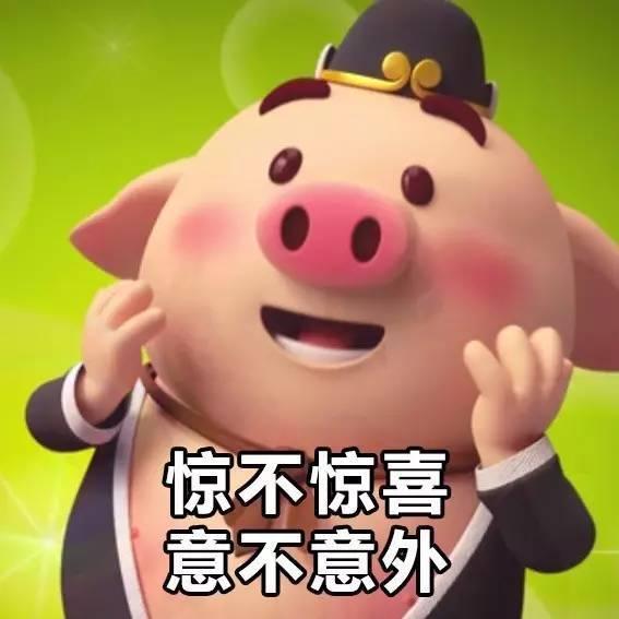 猪弟一性交_今天动图君特意整理了 最全面的 跑步猪表情包 抖音跑步猪第一弹 责任
