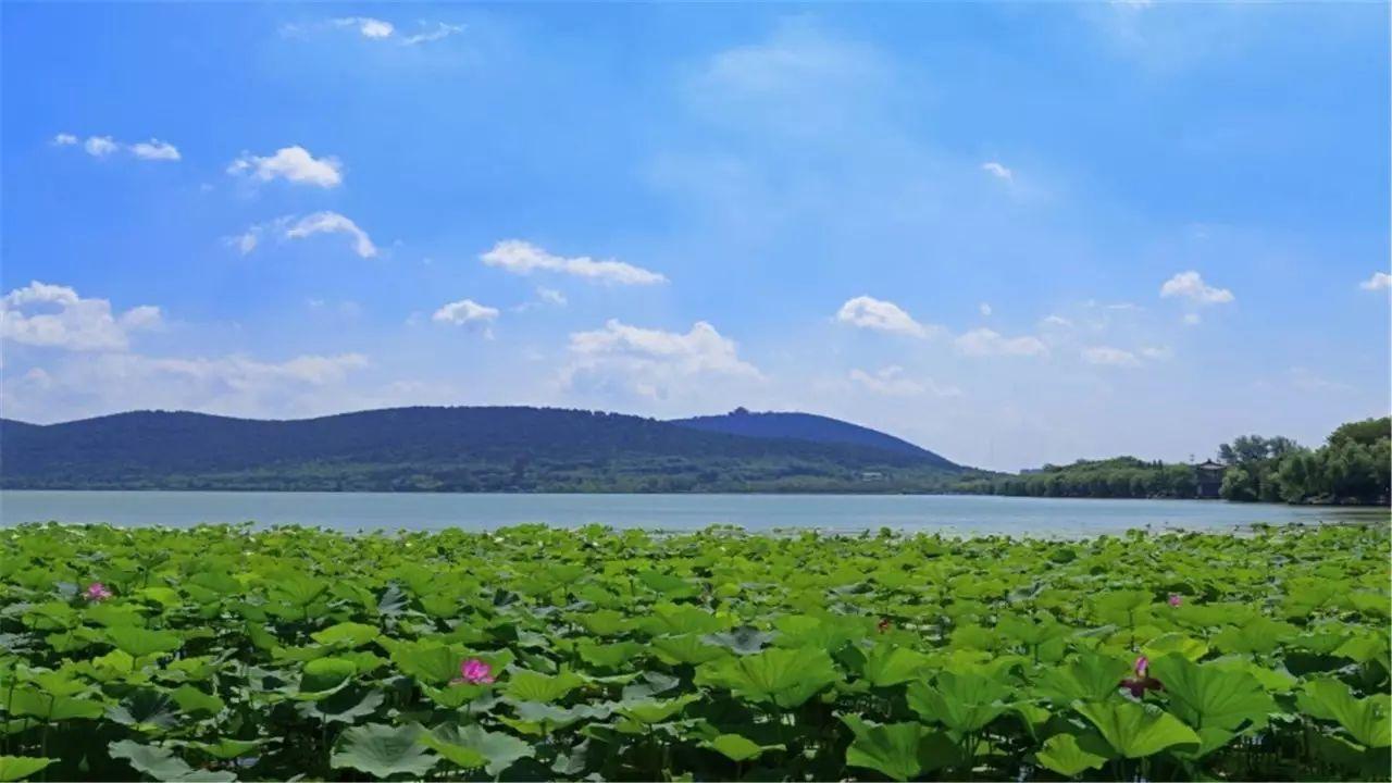 你胜迹只知道太湖的六朝人间,常州的风光古镇,南京的苏州园林,无锡的无还是121的游戏攻略图片