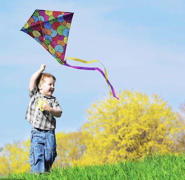 3,手绘风筝diy 4,放飞梦想,森林寻宝 每一项都会让孩子 开心一整天!
