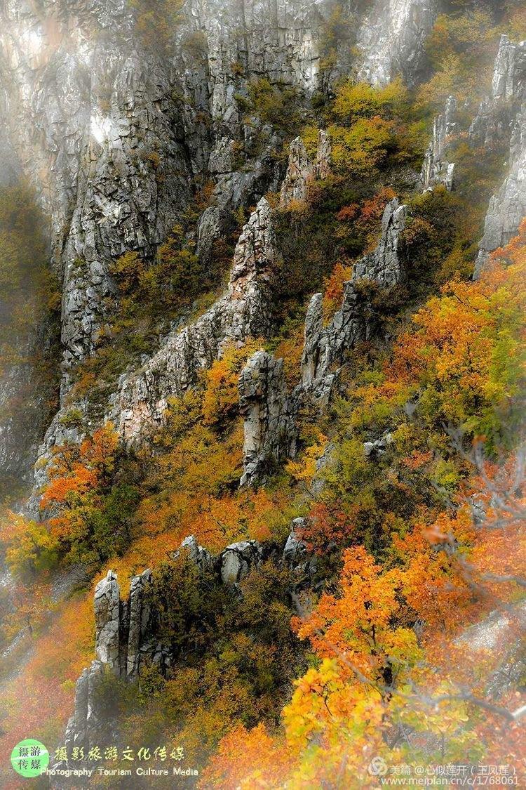 中国最美的秋天在呼伦贝尔,呼伦贝尔最美的秋色在达尔滨!