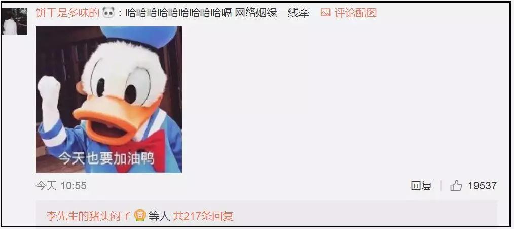 """贺岁杯柯洁朴廷桓""""新仇宿恨"""" 虎丸不成小觑"""