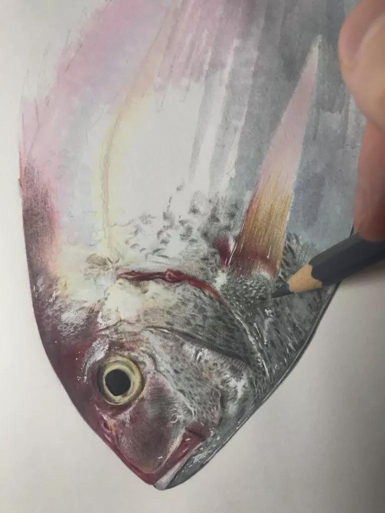 一条超写实的鱼是怎么画出来的