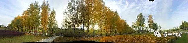 榆林这9种美食竟然都是非物质文化遗产!