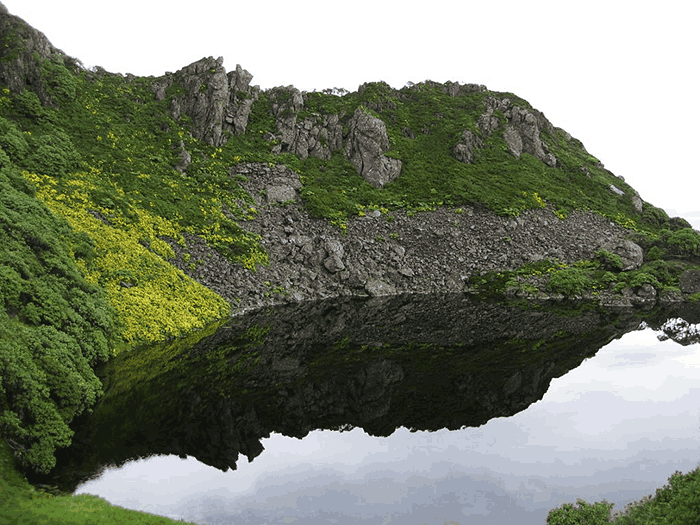 原始神秘的黑竹沟,被称为中国百慕大,别单独去徒步旅行