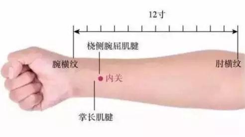 河北东民堂程�t:手上这个穴,每天按一按,血管通畅心情好、气色好!