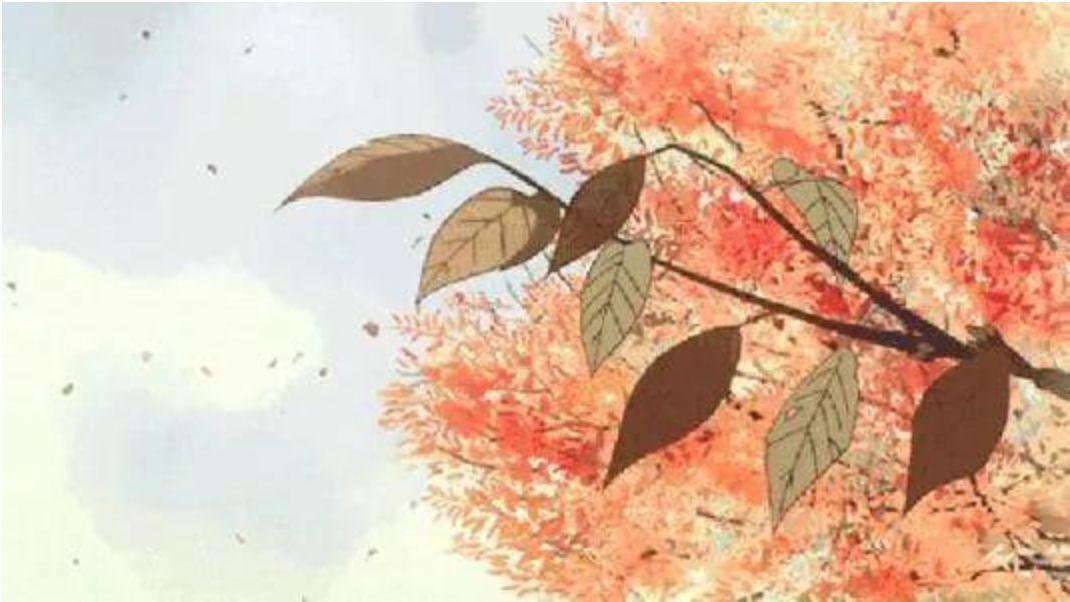 【科普】「秋凍」養生季,如何做到涼而不寒?