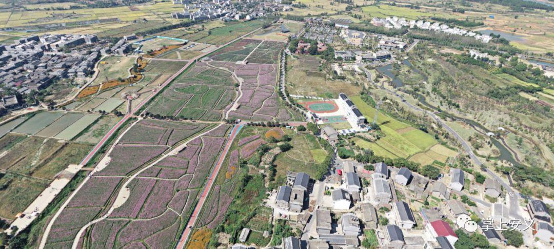 安义人口_人去楼空的江西安义县,加紧实施 三回 工程.