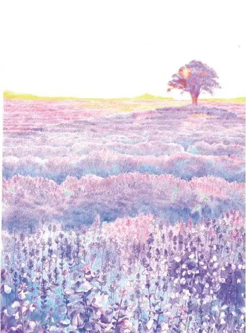 简单风景彩铅有树