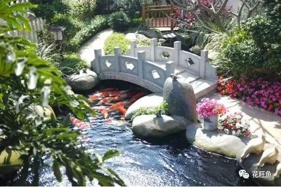 然而根据南北方气候的不同,庭院中的景观植物和鱼池设计也各有不同.图片
