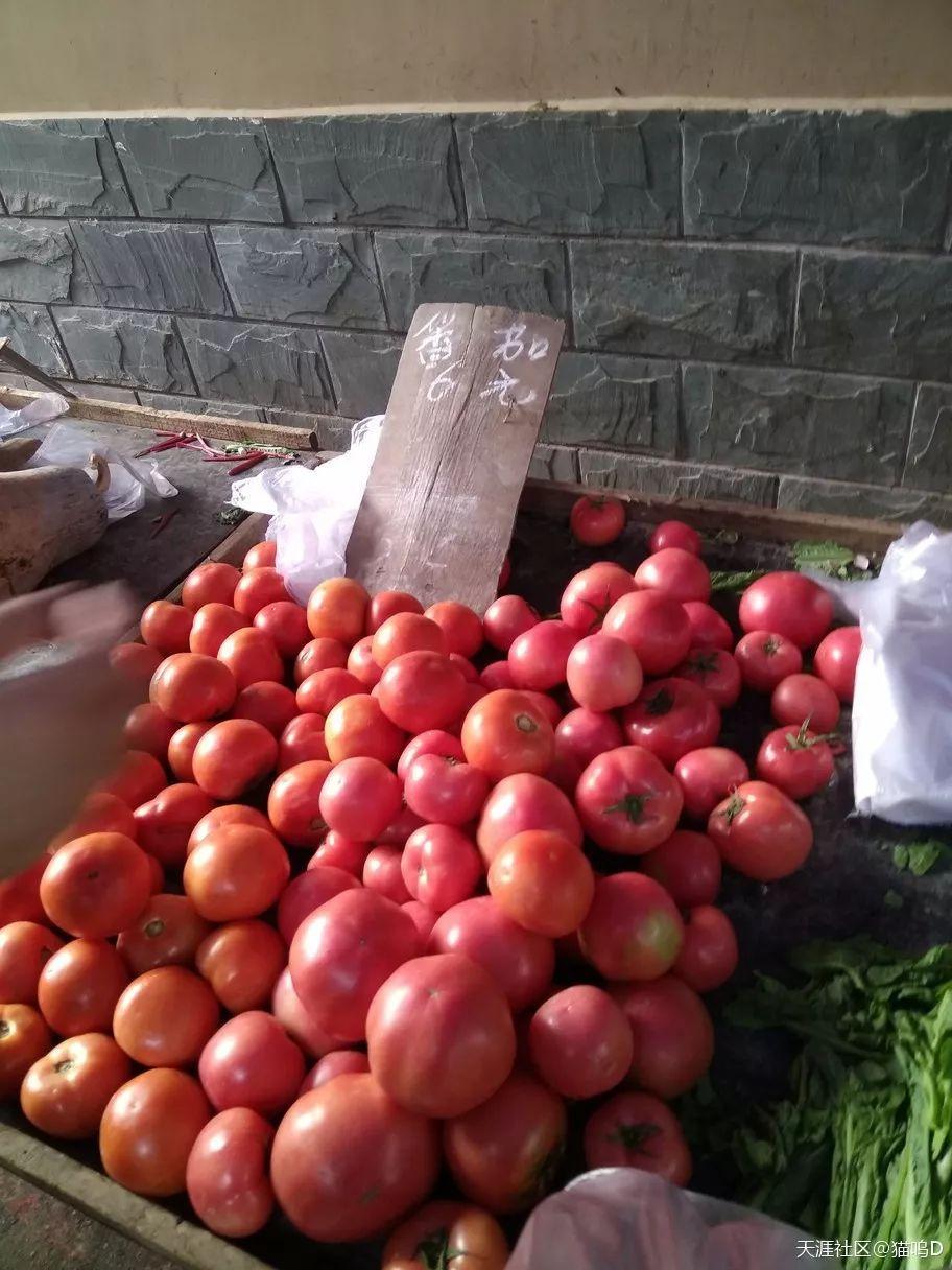 毁童年之y荡童话番茄的马甲