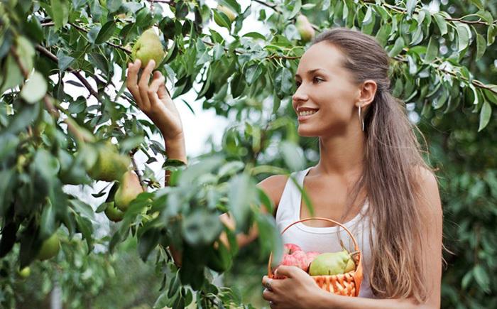 秋干气燥!多吃这些水果,补充维C还助攻减肥