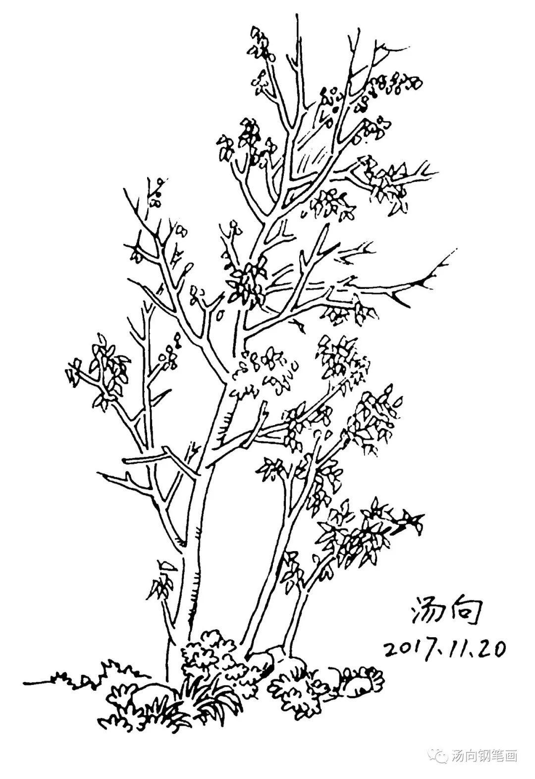 简笔画 手绘 线稿 1080_1572 竖版 竖屏