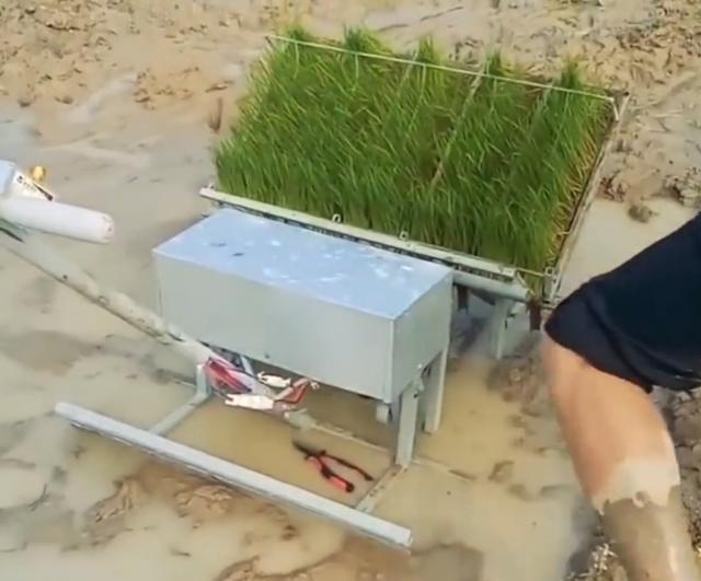 自动插秧机的工作原理_插秧机原理