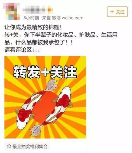 锦鲤 热词 热图6