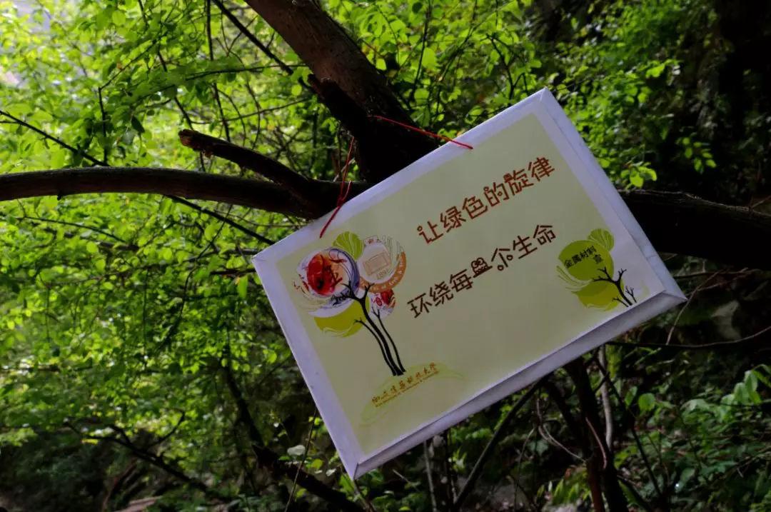 保护秦岭·我爱家园——西安小记者走进太平国家森林公园图片