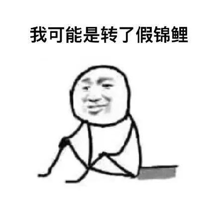 锦鲤 热词 热图10