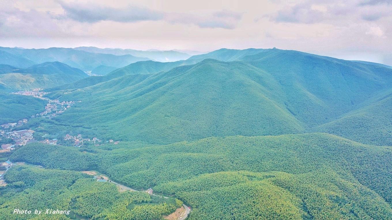 华东第一竹海,不仅四季分明,还是森林氧吧