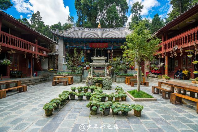 不烧香只种花草,大理这个文艺尼姑庵美出了中国新高度!
