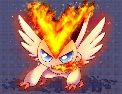 神奇宝贝 盘点七只最强火系宝可梦,最后一只可毁灭世界