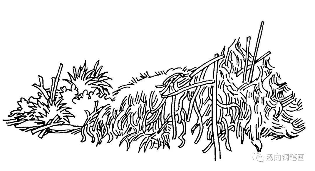 藤蔓黑白手绘素材