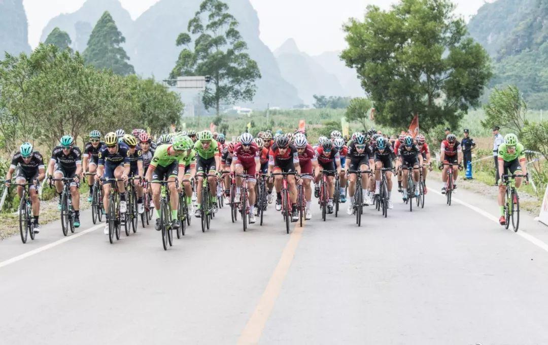 如何欣赏职业自行车比赛阵型?