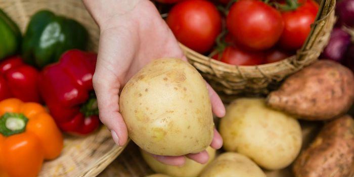 9月CPI数据创近七月新高菜价还会上涨吗?