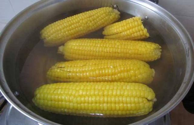 紫色玉米是转基因玉米吗?营养师告诉你真相,吃玉米时不要忽视