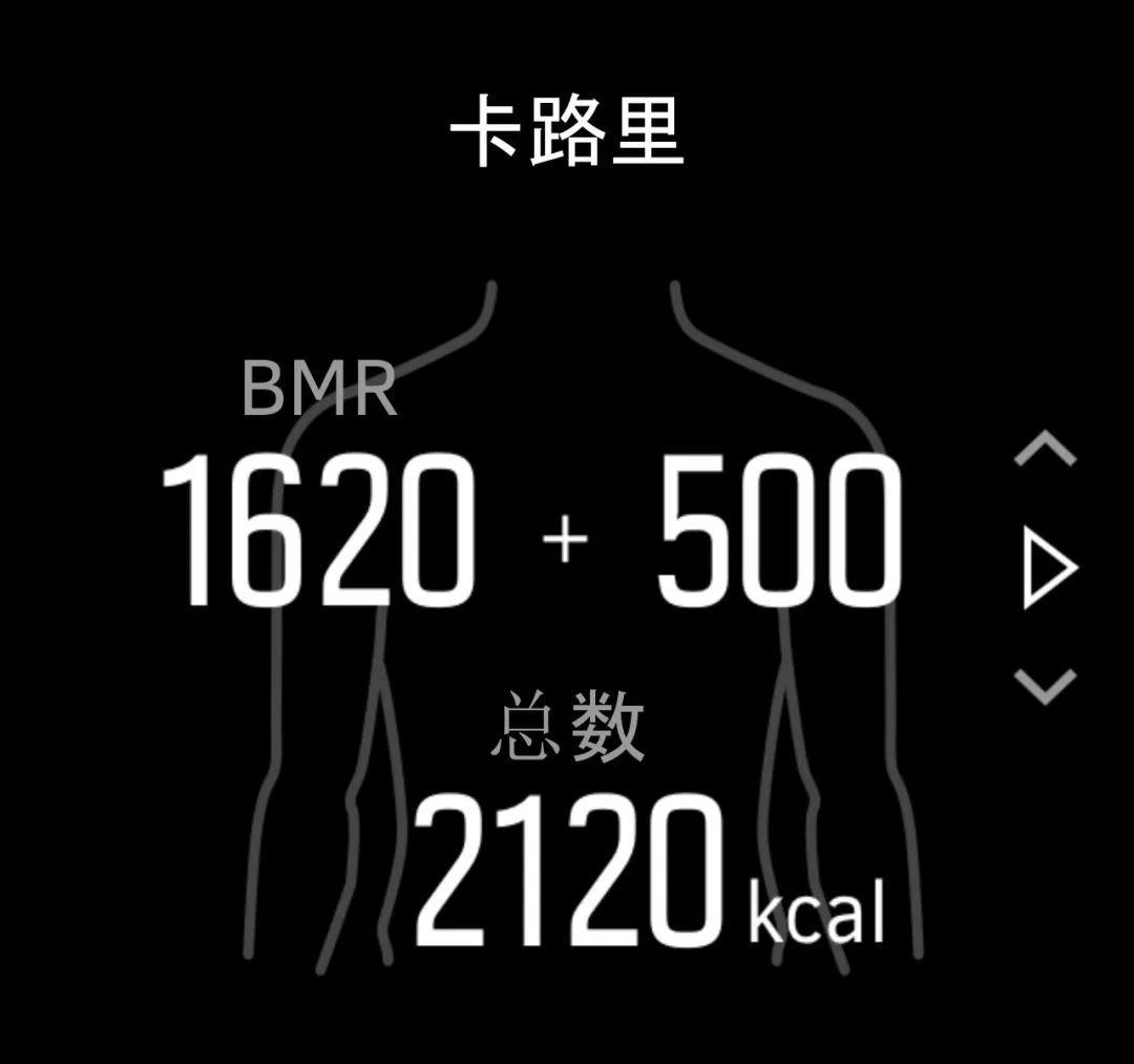 Image result for 记录热量消耗