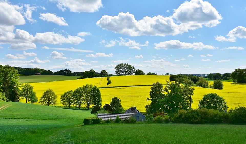 政策等多项利好持续释放 农村环保市场未来可期