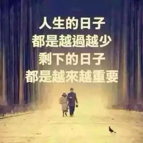 余生不长,请好好珍惜你爱的人和爱你的人