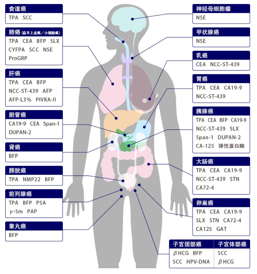 恶性肿瘤图片