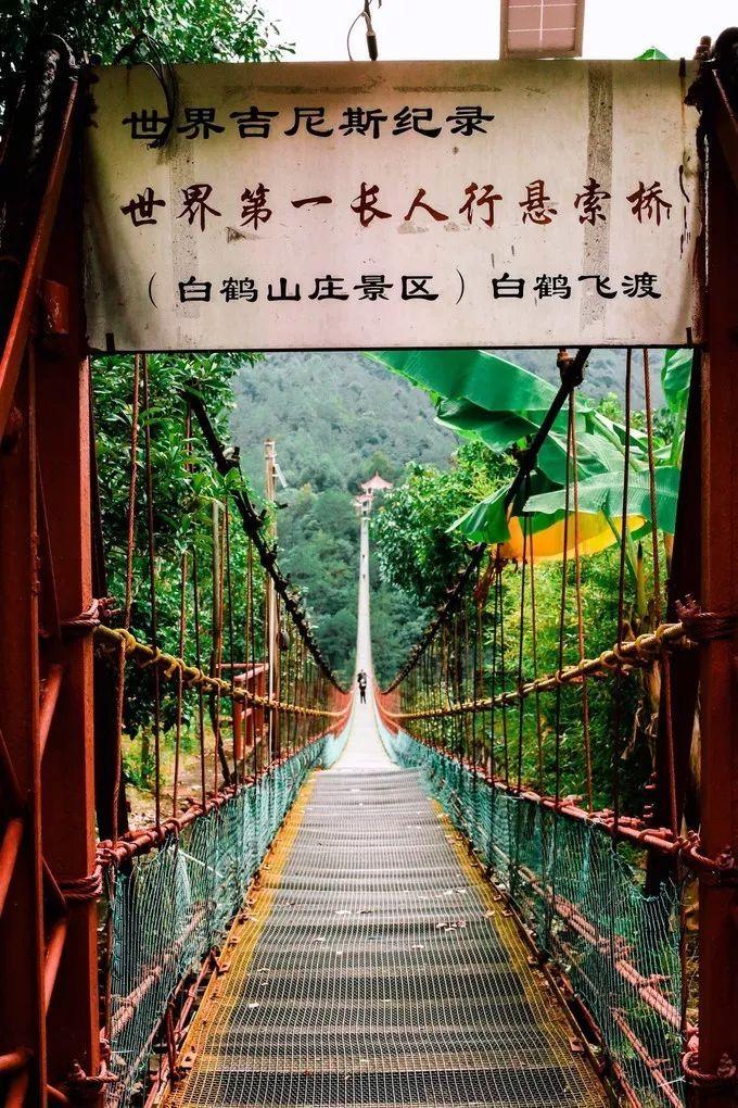 被誉为中国最纯净的美丽风景线,这里集结了浙江所有令人向往的美景