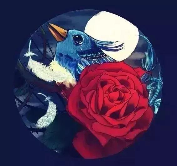 夜莺与玫瑰英文版_夜莺与玫瑰