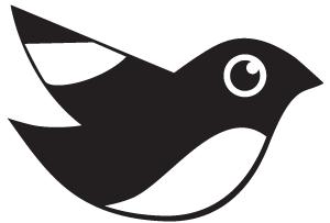 学校有多少种鸟?宁诺观鸟达人为你揭秘校园鸟儿们的逆天颜值