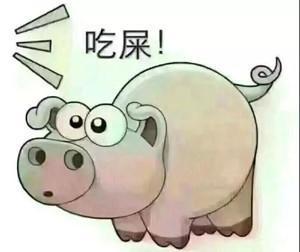 猪喊到表情包_图片图片