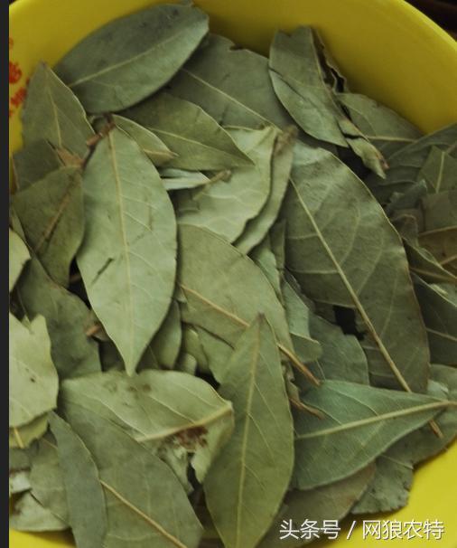 教大家认识柳州螺蛳粉卤味所需要的香料及食材介绍!