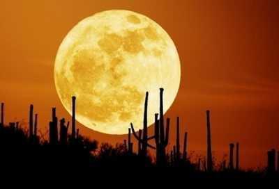 地球自转一圈是一天,月亮自转一圈是一月,那太阳呢?自身都不同