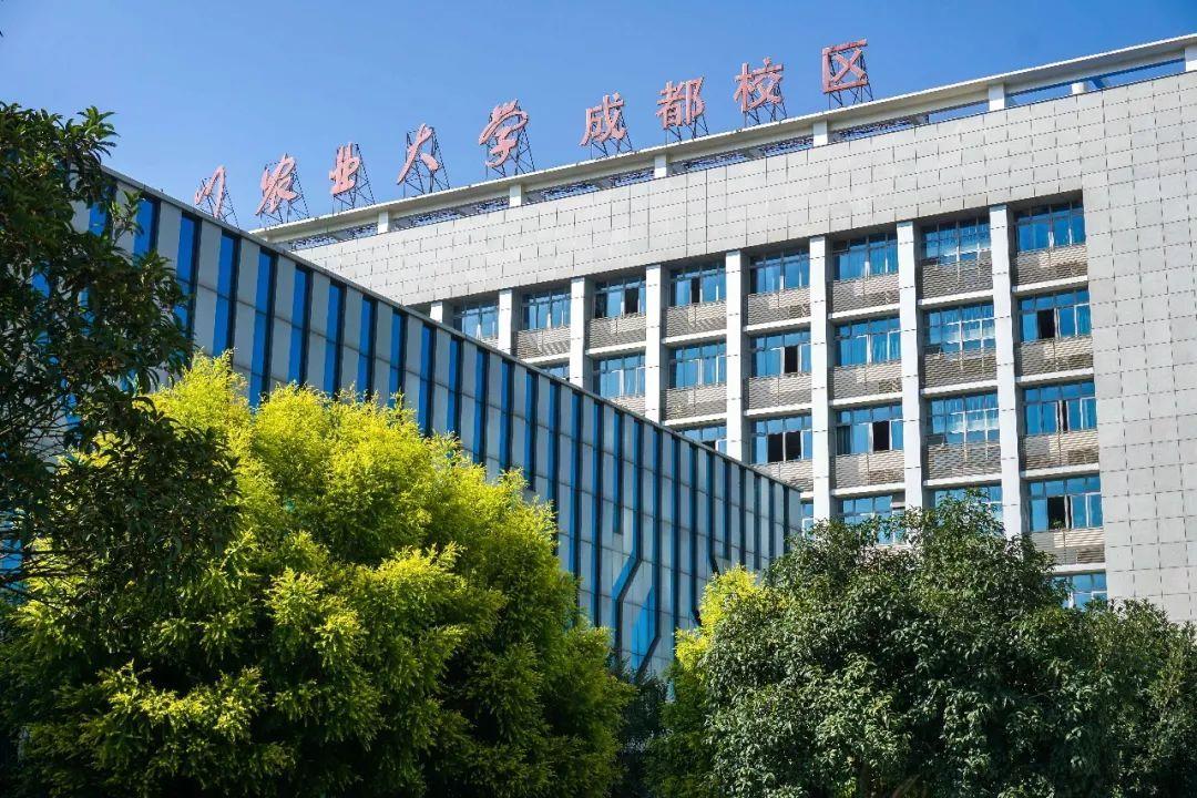 中国第一网红高校,川农又火了!