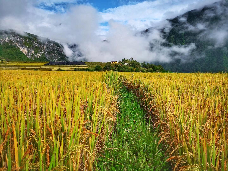 川藏线秋季错峰出行与美食美景有缘,包车拼车住宿也便宜! 川藏线旅游攻略 第11张