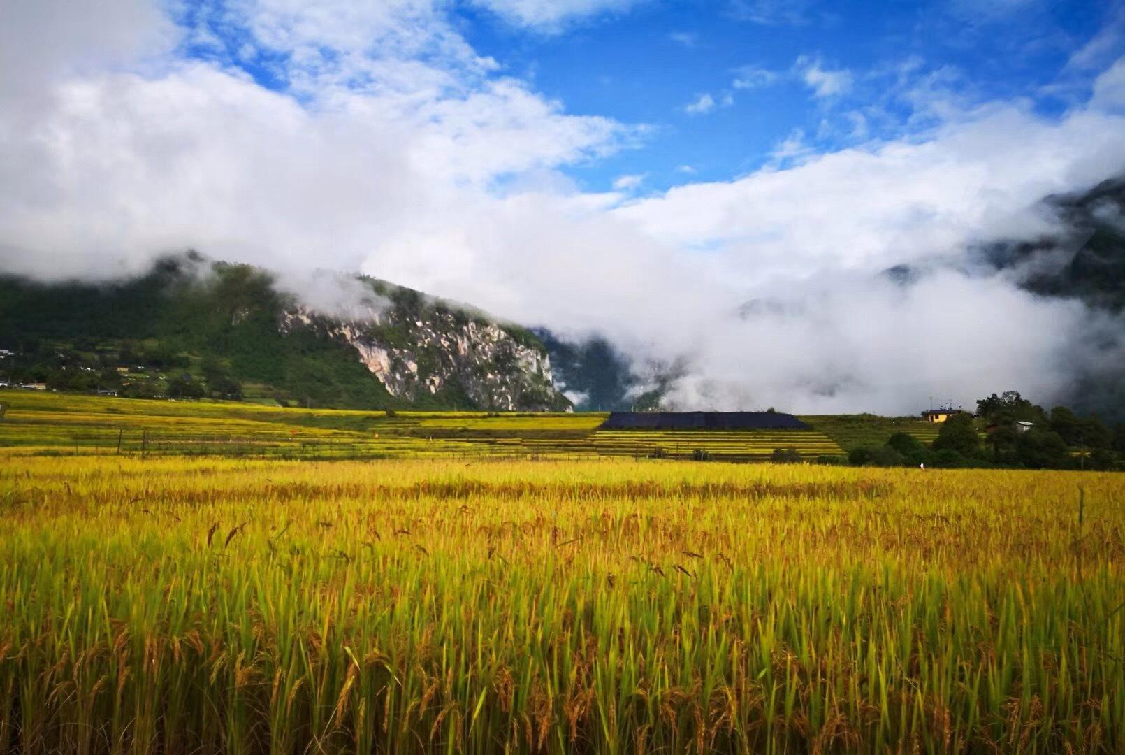 川藏线秋季错峰出行与美食美景有缘,包车拼车住宿也便宜! 川藏线旅游攻略 第13张