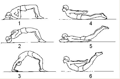 飞燕式操逼_拱桥式及飞燕式锻炼(推荐1