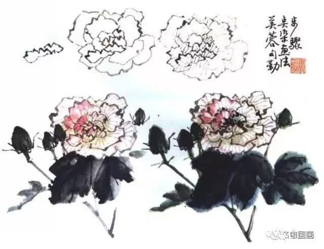 【国画知识】芙蓉花国画的绘画技法,写意芙蓉步骤详解图片