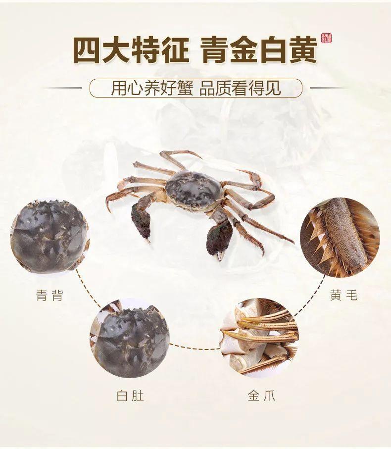 检验大闸蟹真伪的四个条件