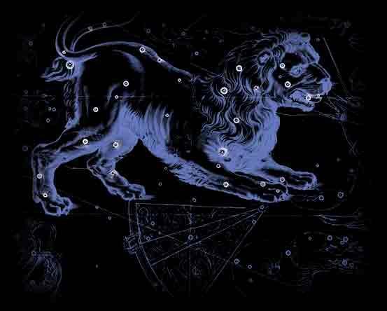 狮子座b血型狮子座图片