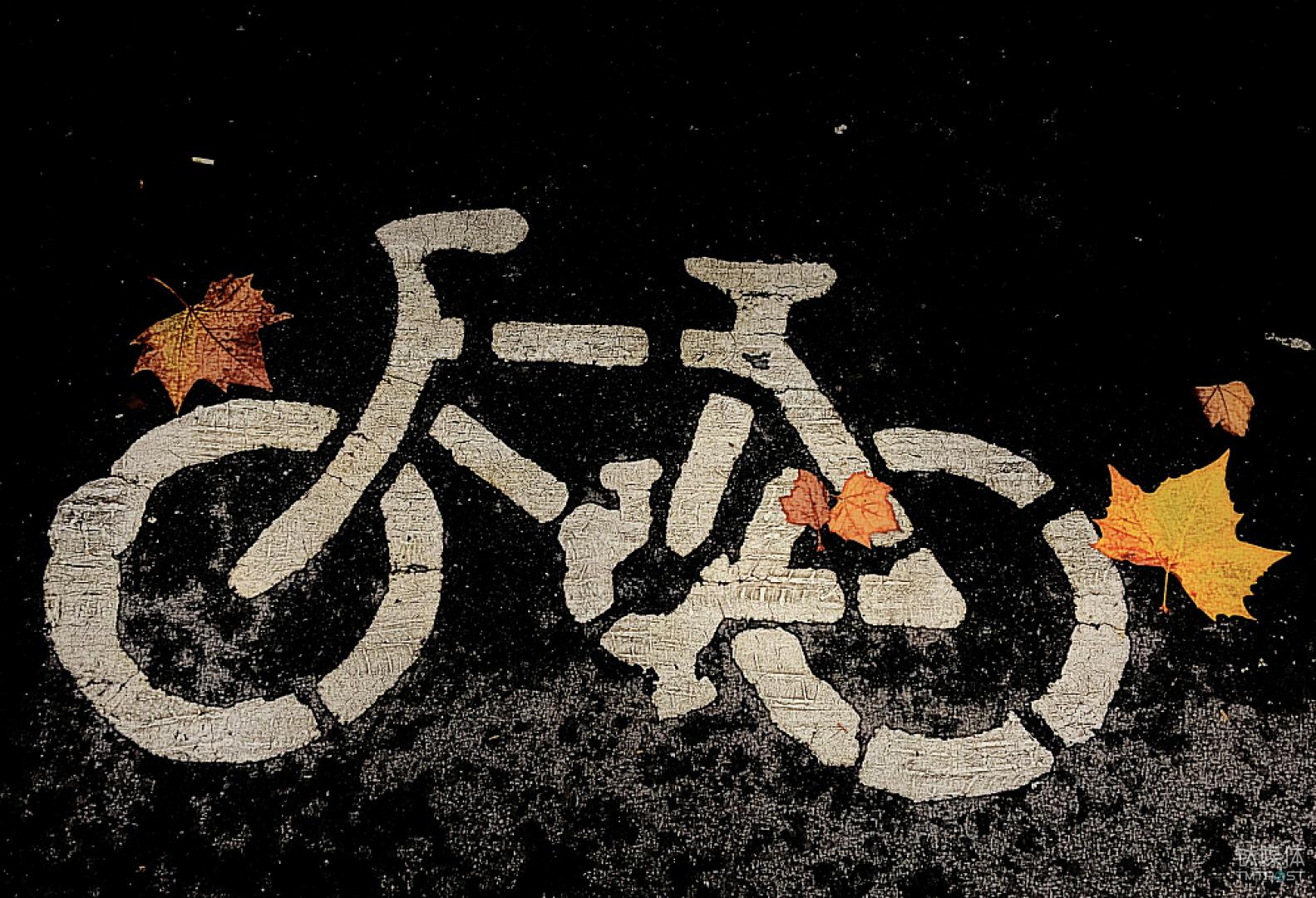 共享单车ofo,驶向何方