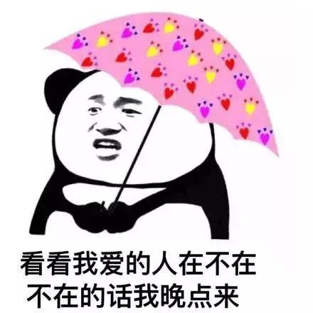 搜狐资讯_搞笑斗图表情包:你是头七彩猪-搜狐大视野-搜狐新闻