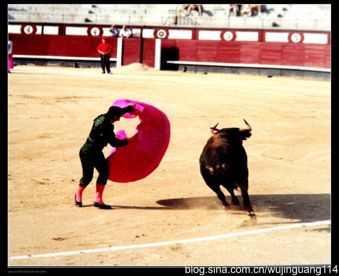 亲历:充满刺激的西班牙斗牛(组图)