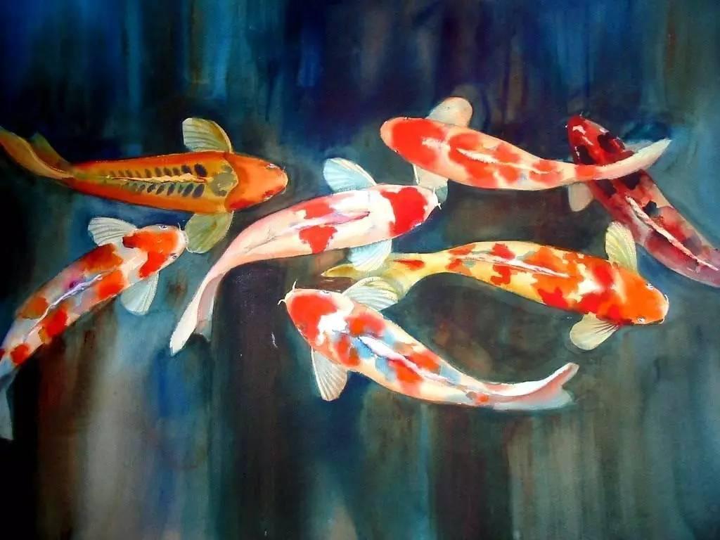 支付寶和美國大獎的錦鯉紅遍網絡,才知道原來錦鯉文化圖片