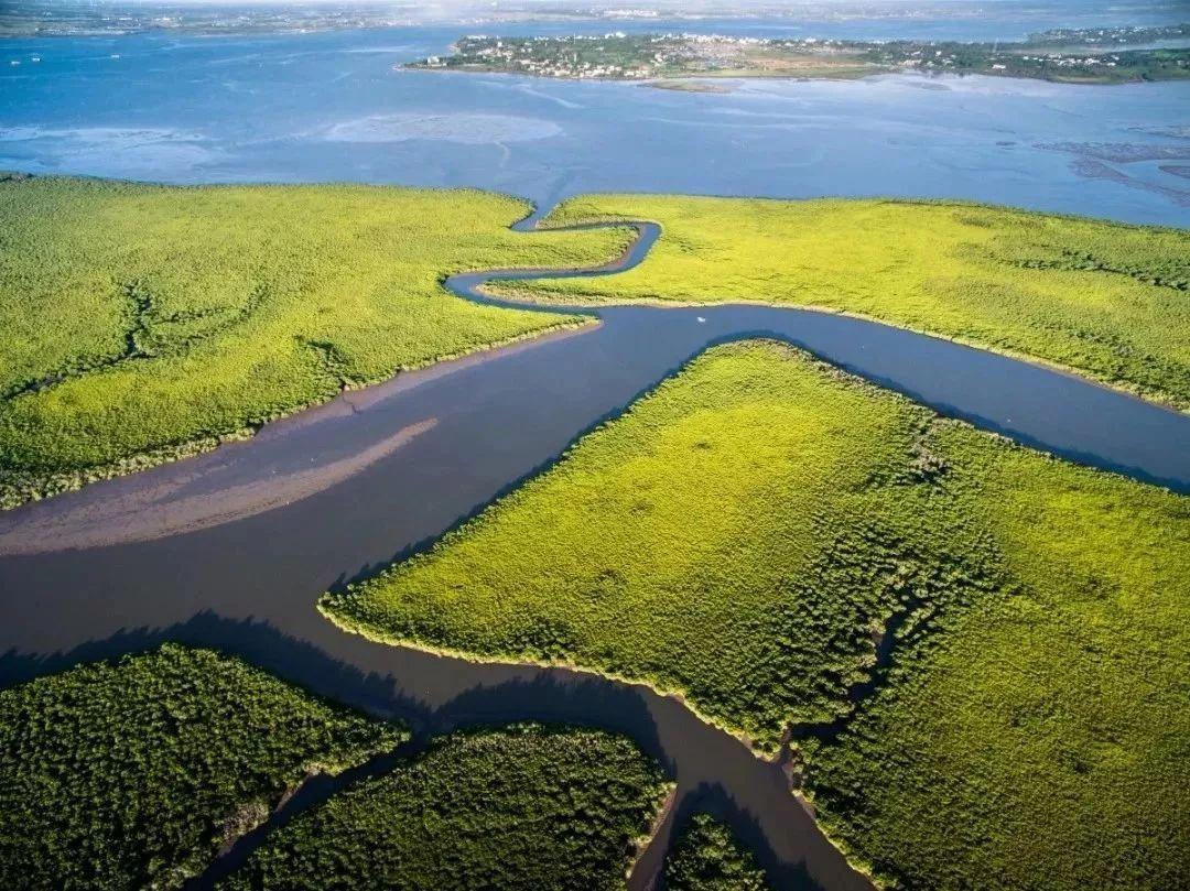 海南东寨港国家级自然保护区.图片来源:海口湿地网图片