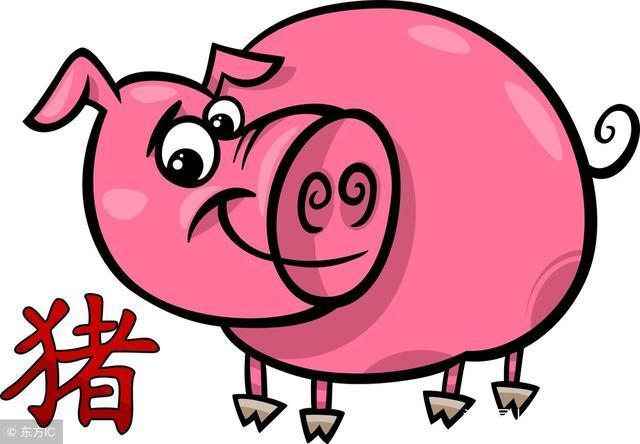 2019年生肖运揭晓:亥猪,子鼠,丑牛